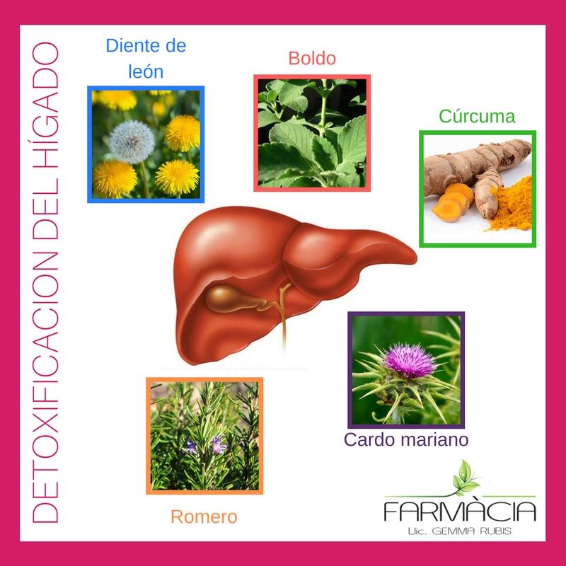 Síntesis deproteínas (1)